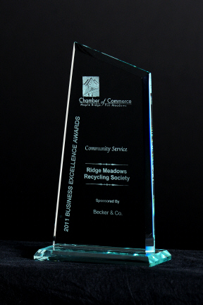 2011 RMRS Business Excellence Award for Community Service