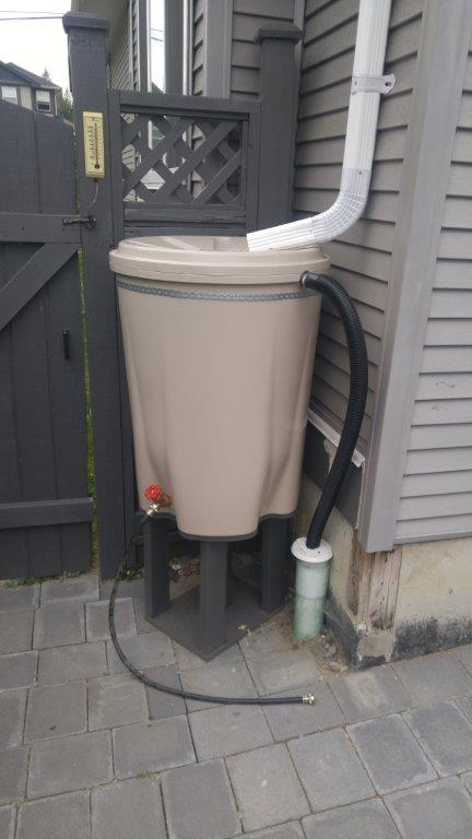 Rainbarrel pic submitted by resident - small