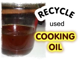 Recycle Used Cooking Oil